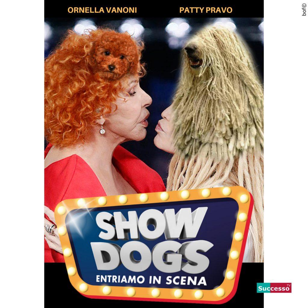 Le cartoline di Successo TV 2019
