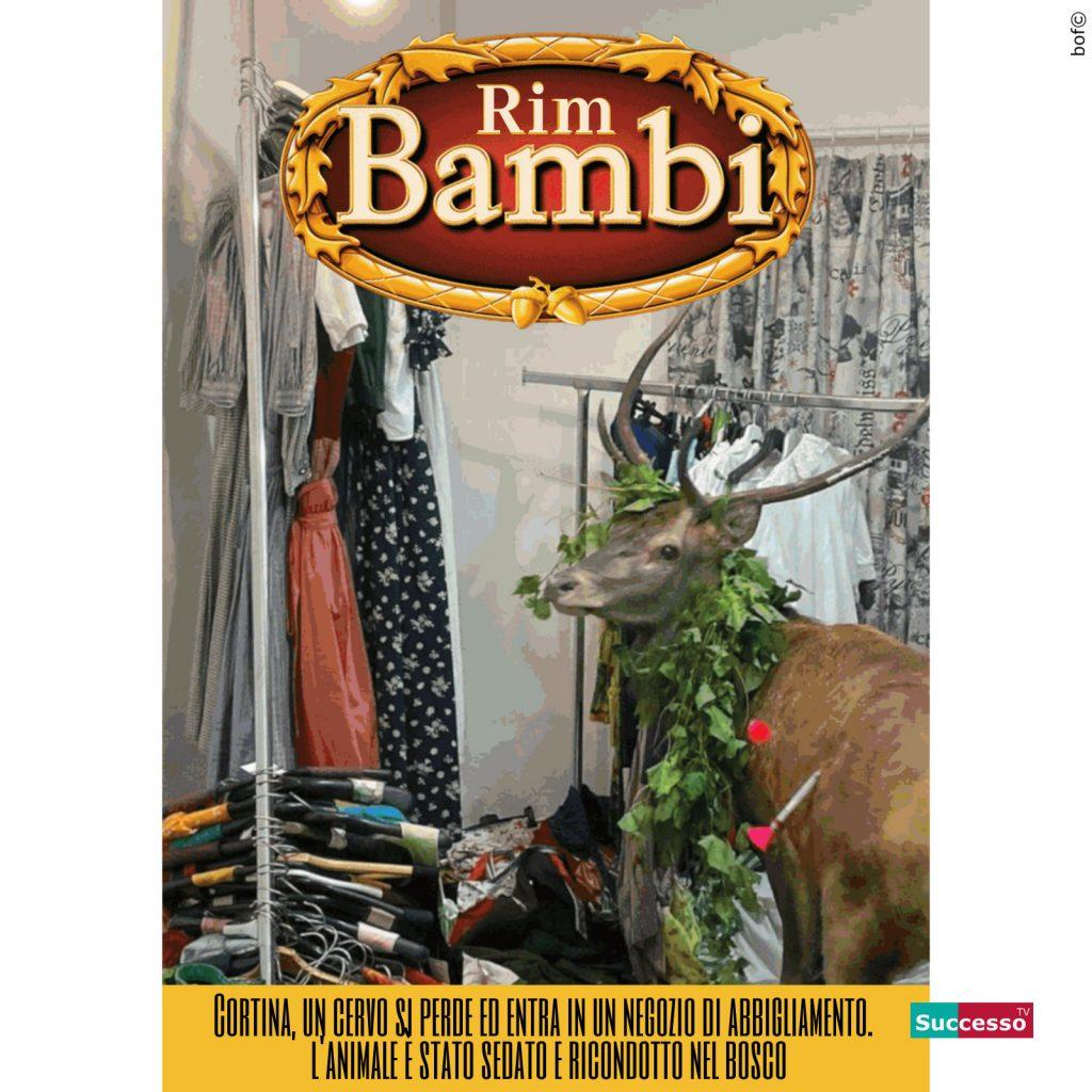 successotv satira parodia cinema bambi disney