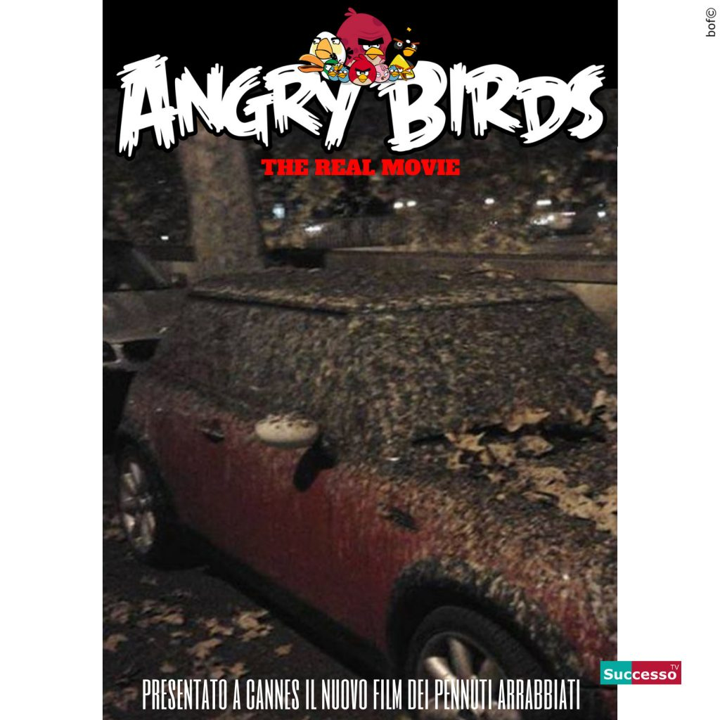 successotv satira parodia cinema angry birds roma lungotevere