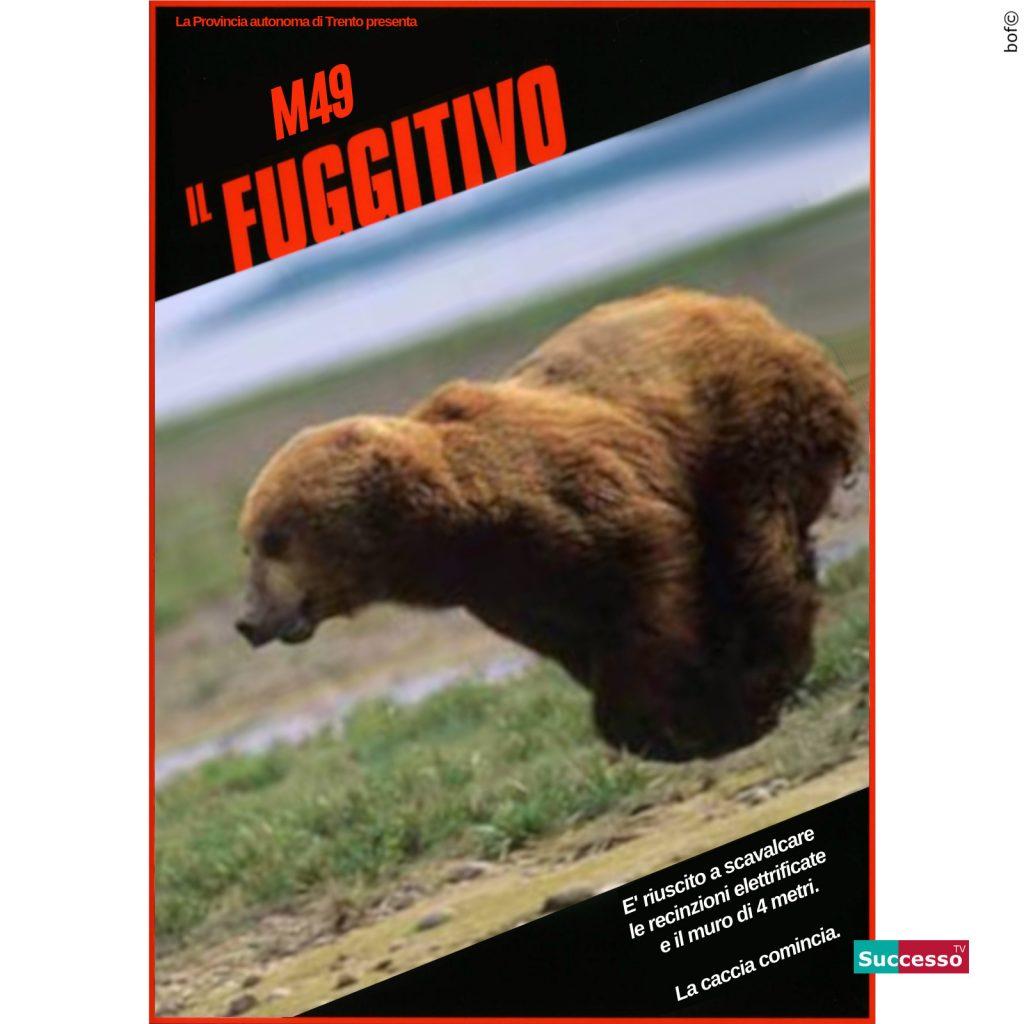 successotv satira parodia cinema il fuggitivo orso