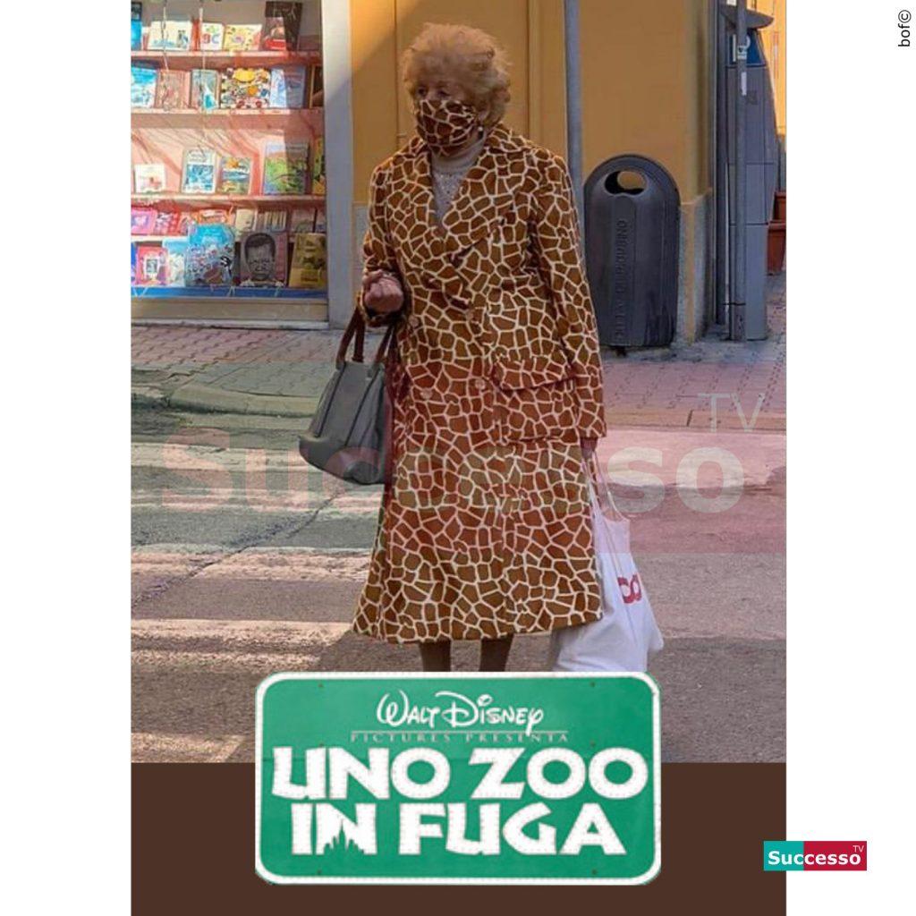 le cartoline di successo tv 2020 Uno zoo in fuga