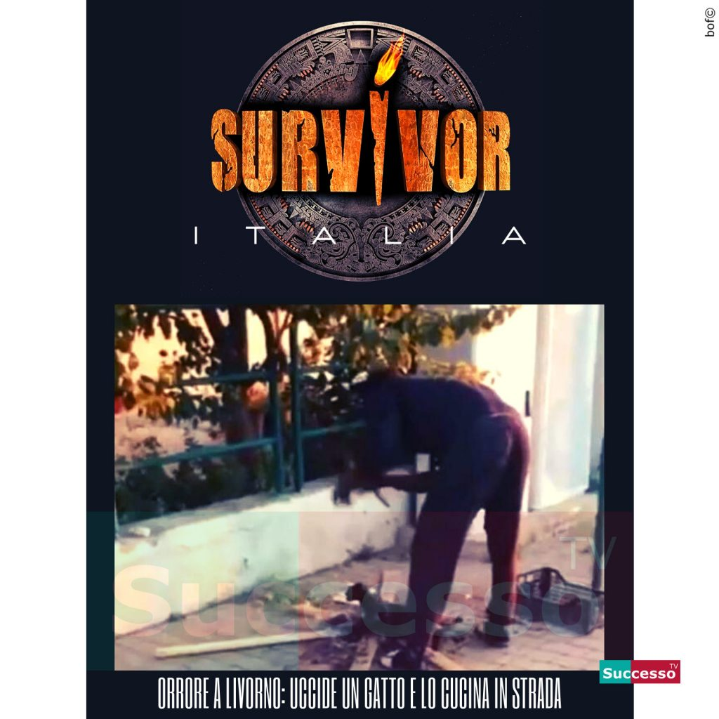le cartoline di successo tv 2020 Survivor